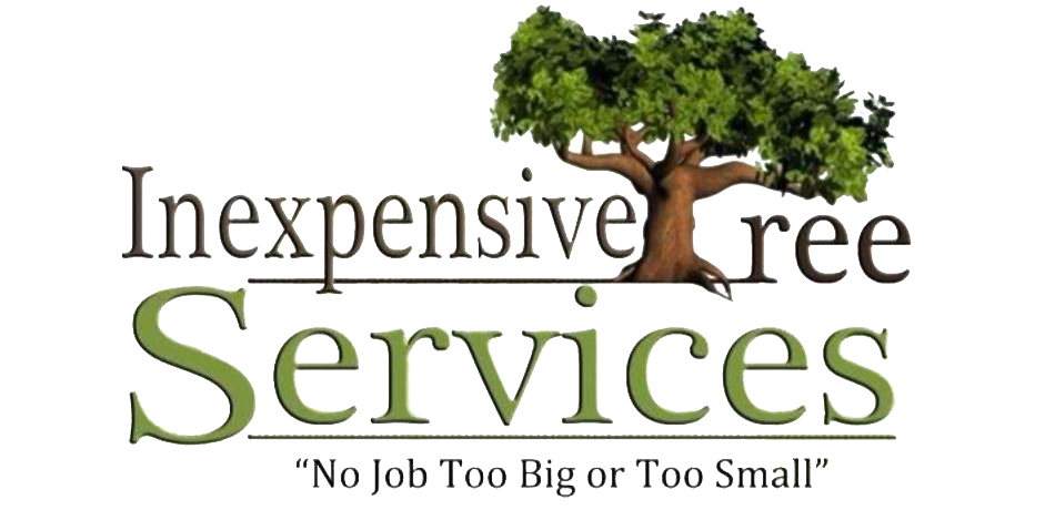 Inexpensive Tree Services Logo